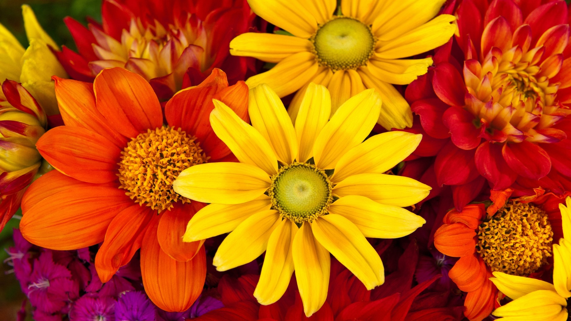 Flash Sale! 29% Off The Aztec Sun Bouquet – was £29.99, now £21.24 – Serenata Flowers Voucher Code